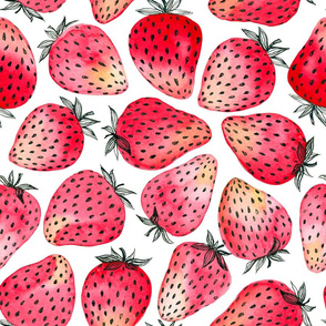 Strawberries watercolor and ink
