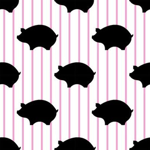 Black Pig & Pink & White Pin Stripes
