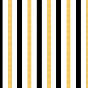 """1"""" Black & Gold Stripes on White"""