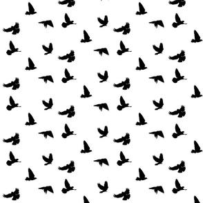 Doves in Flight, Black on White