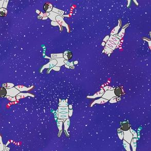 cosmic kitties