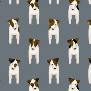 Parson / Jack Russell Terriers dogs tilting head standing at attention / slate gray