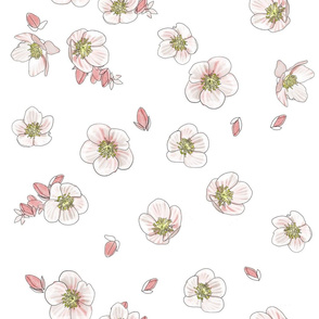 Floral Pink and White