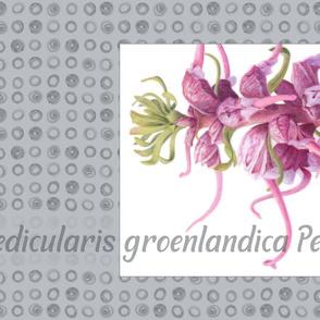 Tea Towel Elephant Flower