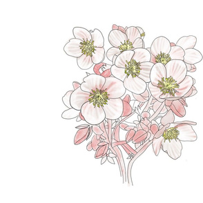 White Floral Panel