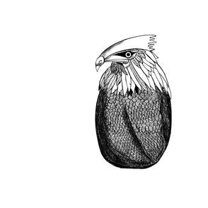 Panel Eagle