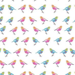 birdiewhwite-01
