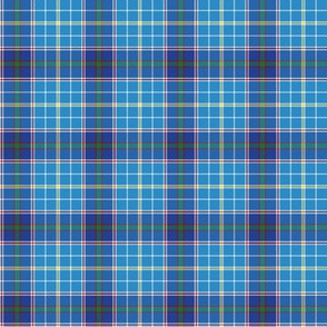 "Texas bluebonnet tartan, 2"" bright"