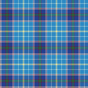 "Texas bluebonnet tartan, 3"" bright"