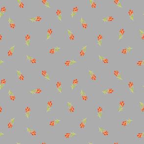 Orange Buds on Grey