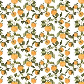 Mini Orange Blossom