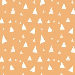 Triangles Salmon