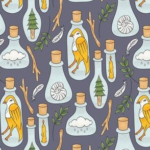 Things of Nature in Jars