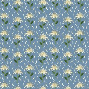 Light Blue Wispy Chrysanthamum-01