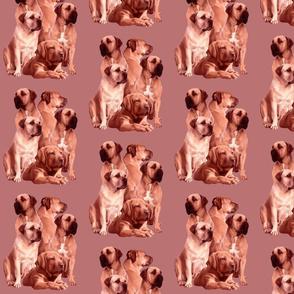 mastiff family fabric