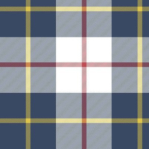 "MacRae of Conchra blue tartan, 6"" greyed"