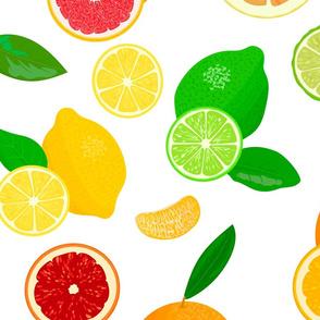 citrus fruits pattern1
