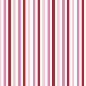 Paris 101 Stripe