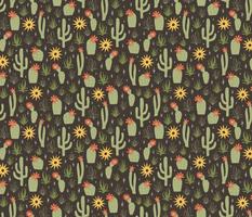 cacti and sunshine