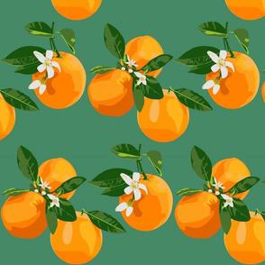Orange blossoms  on teal