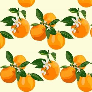 Orange blossoms on cream