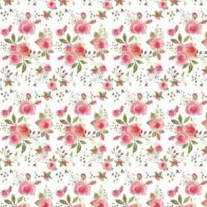 Peach Roses WC (150V)