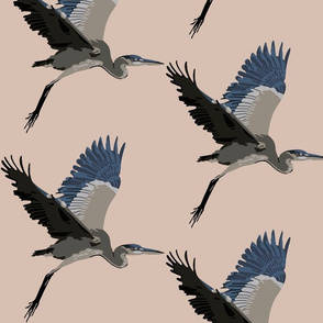 Harold the Heron in blush