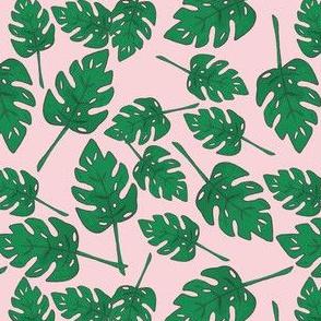 Tropicali Botanics