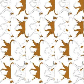 Trotting Ibizan hound border vertical - white