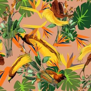 Birds of Tropical Paradise2 copy