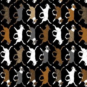 Trotting Miniature Bull Terrier border vertical - black