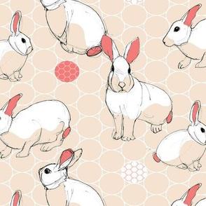 Sketchy Bunnies Warm