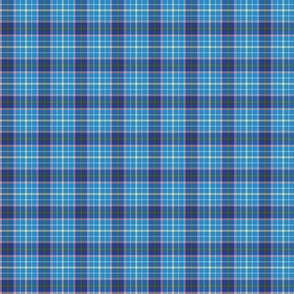 "Texas bluebonnet tartan, 1"" bright"