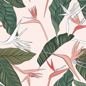 Bird of Paradise floral in pink