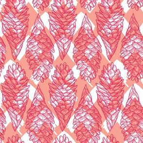 Coral Hawaiian Ginger Pattern
