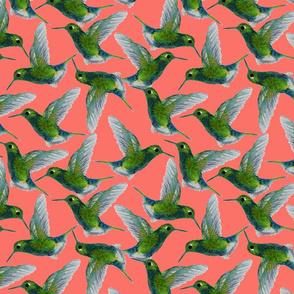 Watercolor Hummingbirds-Coral