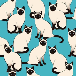 Siamese Cats on Turquoise