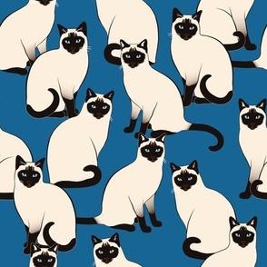 Siamese Cats on Dark Blue