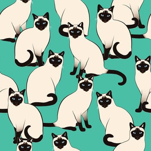 Siamese Cats on Teal