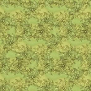 3oakclusters moss
