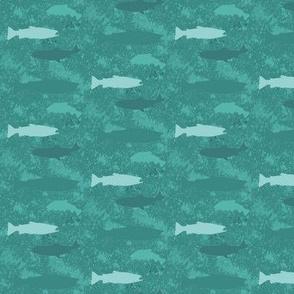 fish b6
