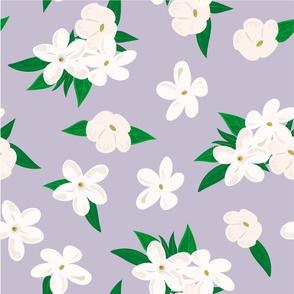 jasmine pattern