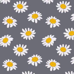 chamomile pattern 2