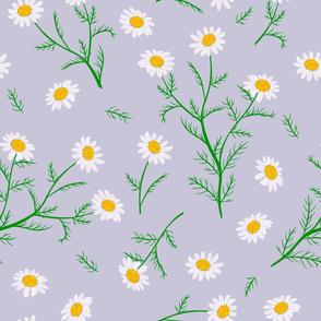 chamomile pattern