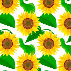 sunflowers patten 2