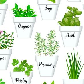 herbs in pots pattern