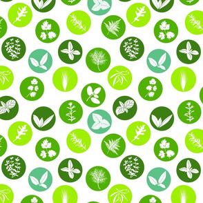 herbs circles pattern