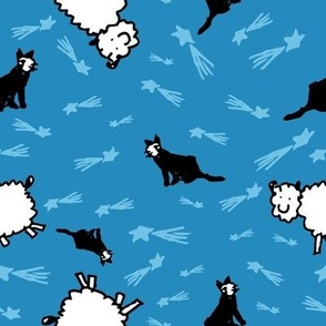 Counting Sheep, Stars, and Cats
