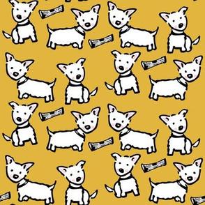 west highland white terrier: westie gold