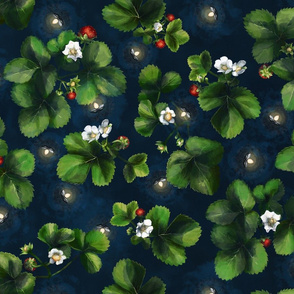 Strawberry Flowers and Fireflies on a Summer Night